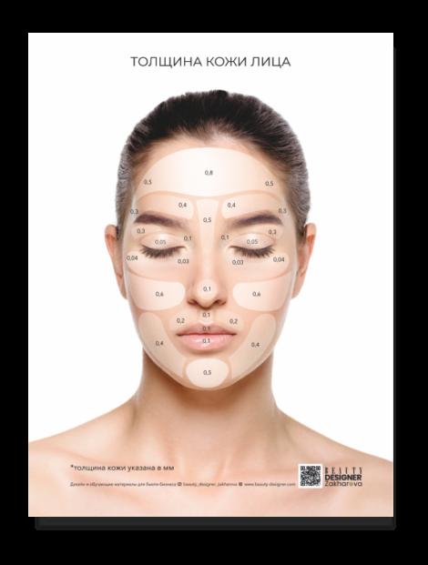 """плакат """"Толщина кожи лица"""""""""""