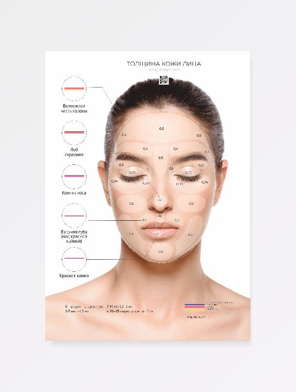 Толщина кожи лица