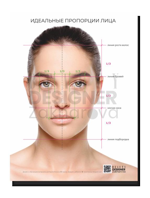 """Плакат """"Идеальные пропорции лица"""""""